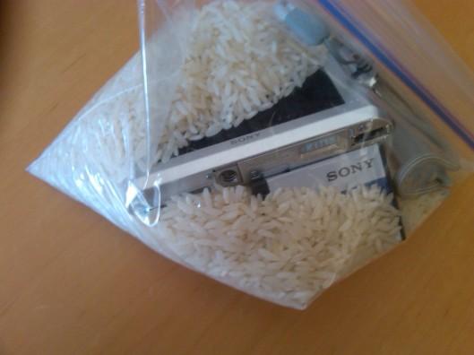 Camera in rice